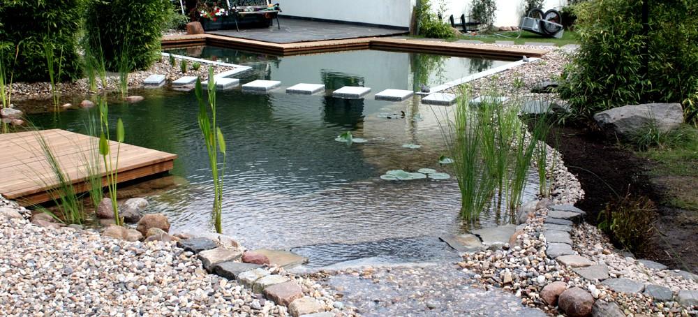 Teichbau magdeburg nishikigoi pond fachhandel f r for Kois und goldfische in einem teich
